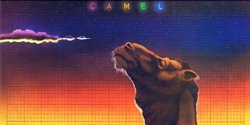 Camel en Ruta 789